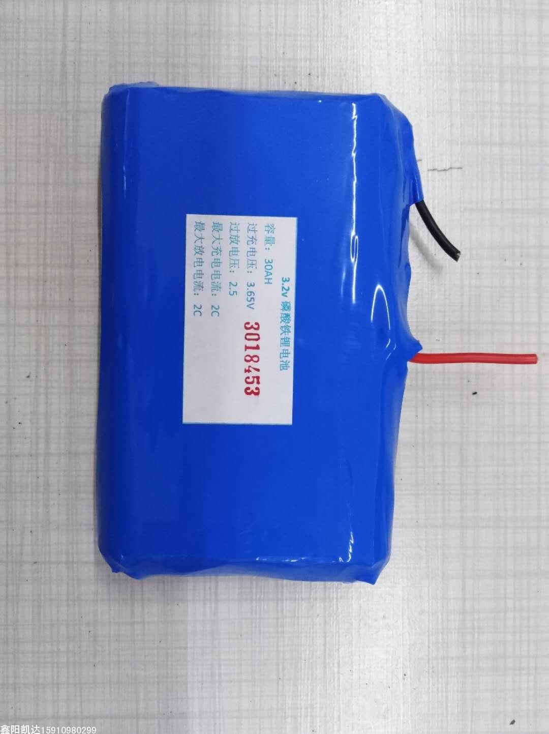 金豆专用30AH磷酸铁体电池