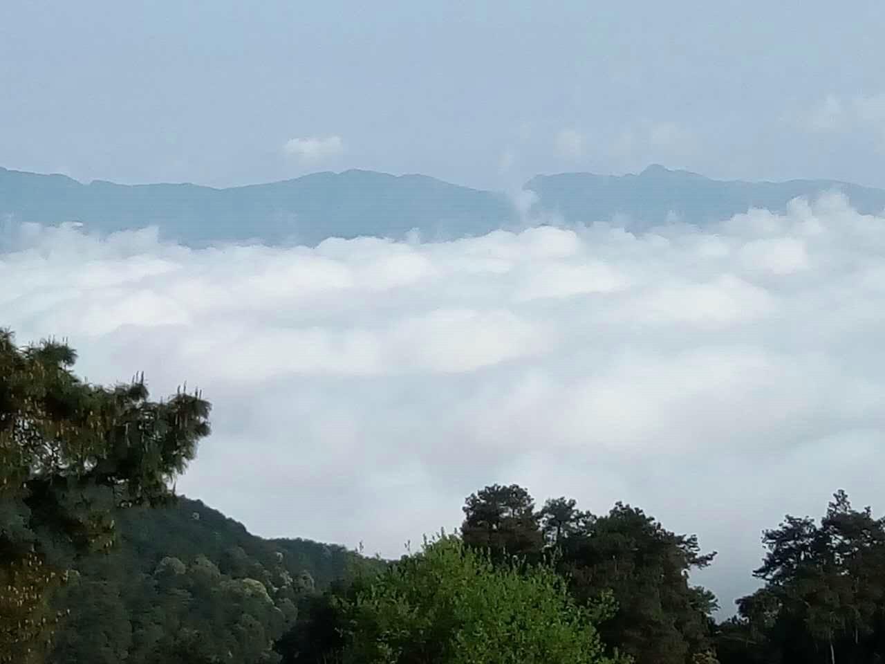 缙云山环境