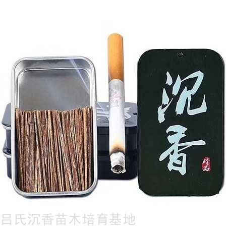 越南芽莊高油沉水煙條