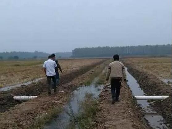 小龙虾养殖池塘设计图-技术专栏-新闻中心-武汉市江夏图片