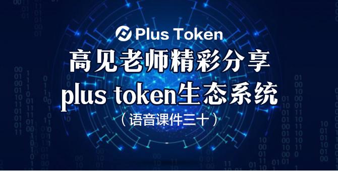 plus token生态系统