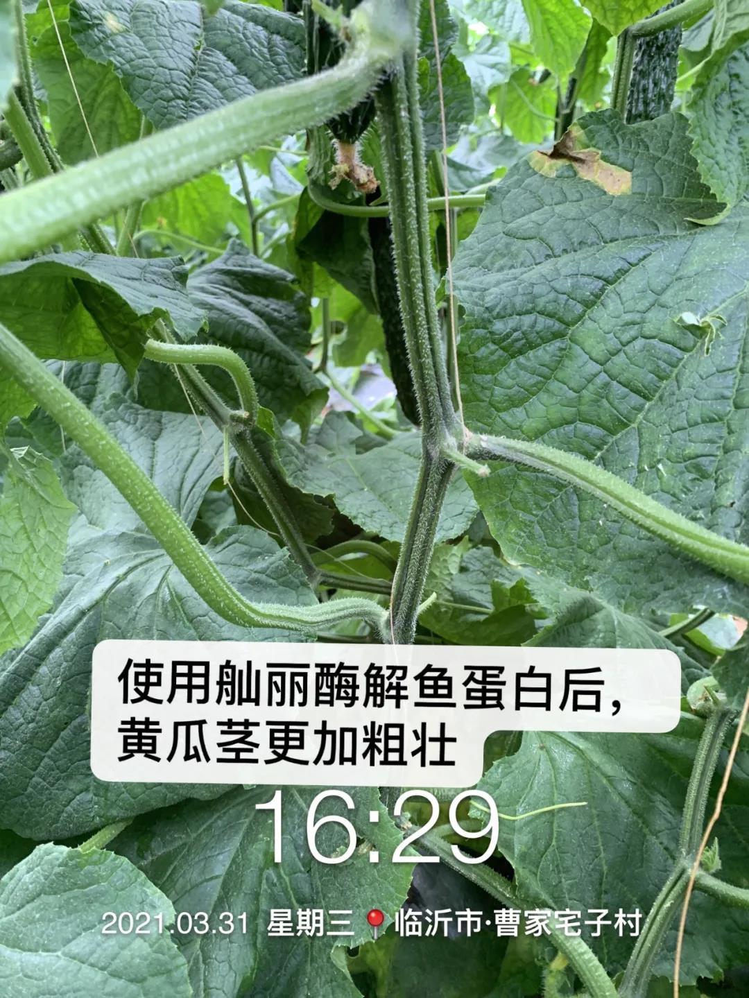 微信圖片_20210511104654.jpg