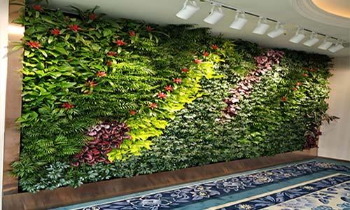 三亚植物墙,三亚垂直绿化,三亚立体绿化