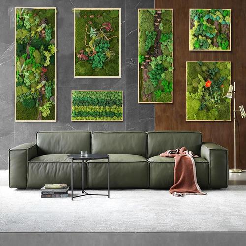 海南儋州市植物墙,儋州仿真植物墙,儋州苔藓植物墙